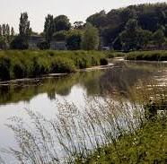 River Parrett Trail